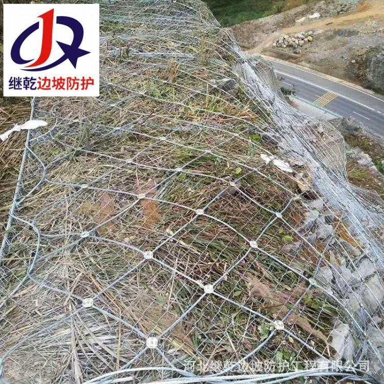 蜘蛛边坡防护网